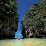 เกาะห้อง มหัศจรรย์ธรรมชาติ ในป่าเกาะ